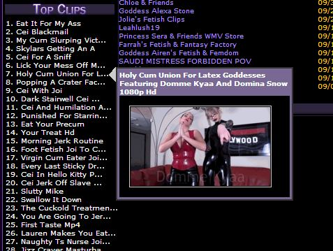 Ranking highly in the CEI category on Clips4Sale!